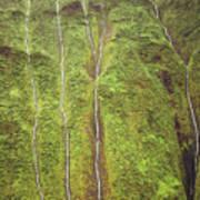 Mount Waialeale Art Print