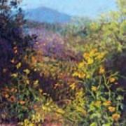 Mountain Beauty Art Print