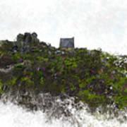 Mountain Cottage In Fynbos Art Print
