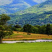 Mountain Farm With Pond Art Print