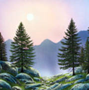 Mountain Firs Art Print