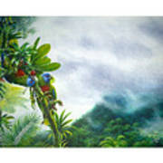 Mountain High - St. Lucia Parrots Art Print