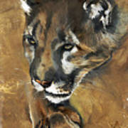 Mountain Lion - Guardian Of The North Art Print