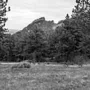 Mountain Peak Through The Trees In Black And White Art Print