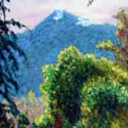 Mountain Rain Forrest Art Print