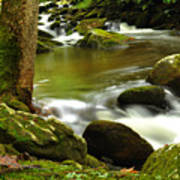 Mountain Stream 2 Art Print