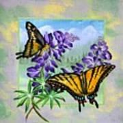 Mountain Swallowtail Art Print