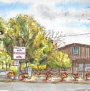 Mountain View Barbeque In Walker, California Art Print