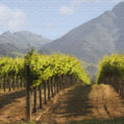Mountain Vineyard Art Print