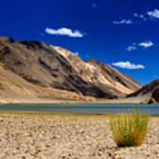 Mountains And Green Vegetation Chagor Tso - Lake Leh Ladakh Jammu Kashmir India Art Print