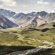 Mountains In Denali National Park Art Print