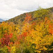 Mountains In The Fall Colors Art Print