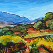 Mountainside Vineyard Art Print