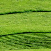 Mowing Hay  Art Print by Thomas R Fletcher