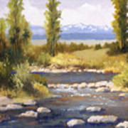 Moyie River Art Print