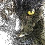 Mprints - Bad To The Bone Art Print