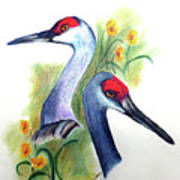 Mr And Mrs Sandhill Cranes Art Print