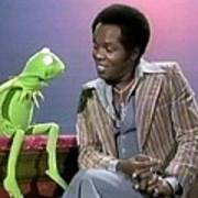 Mr Lou Rawls - Kermit The Frog Art Print