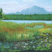 Mt Ampersand From Oseetah Lake Art Print