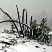 Mt Hood Snow Art Print