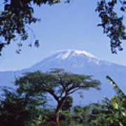 Mt. Kilimanjaro,moshi,tanzania Art Print