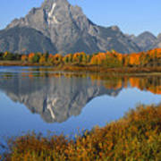 Mt. Moran Fall Reflection  Art Print