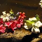 Muddy Flowers  Art Print