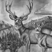 Mule Deer Heaven Art Print
