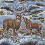 Mule Deer Lovers From River Mural Art Print