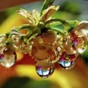 Multicolored Drops Art Print