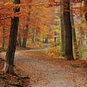 Munich Foliage Art Print by Frenzypic By Chris Hoefer