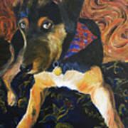 Murphy I Art Print