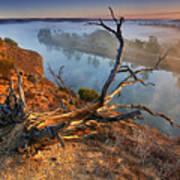 Murray River Dawn Art Print