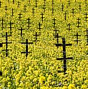 Mustard Color In The Vineyard  Napa Ca. Art Print