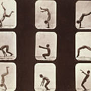 Muybridge Locomotion Back Hand Spring Print by Photo Researchers