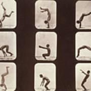 Muybridge Locomotion Back Hand Spring Art Print