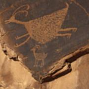 Mv Petroglyph 7364 Art Print