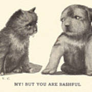 My But You Are Bashful Art Print