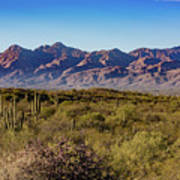My Catalina Mountains Art Print