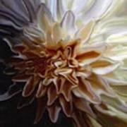 My Exotic Flower Art Print