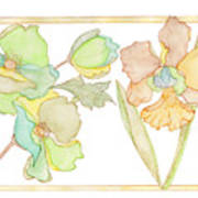 My Favourite Flowers Art Print