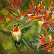 My Loving Hummingbird Art Print