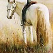 My White Horse  Art Print