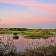 Myakka Wetlands By H H Photography Of Florida Art Print
