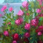 Myback Yard Roses Art Print