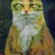 Mysterious Cat Art Print
