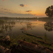 Mysterious Morning Time In Swamp Area. Landscape Art Print
