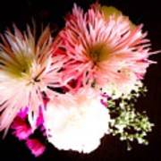 Mystery Of A Flower Art Print