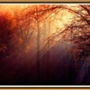 Mystic Forest At Dawn L B With Alternative Decorative Ornate Printed Frame Art Print