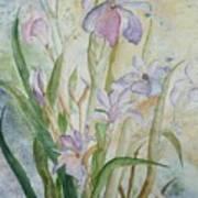Mystic Iris Art Print